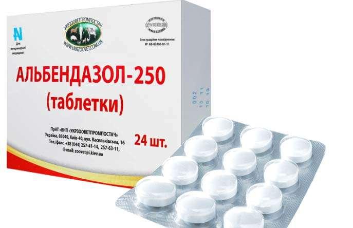 antihelmintikus gyógyszerek az emberek számára megelőzés céljából