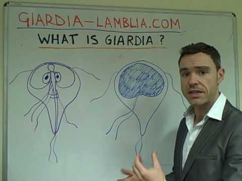 Giardia meaning in urdu