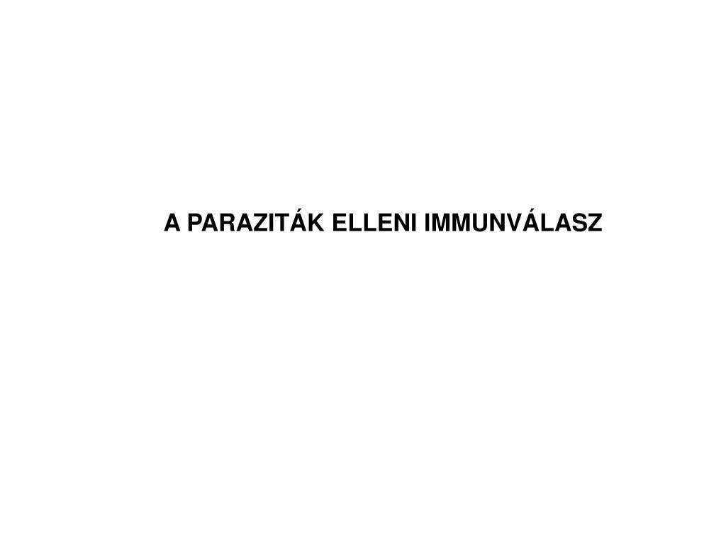 Enterobiosis parazita életciklusa
