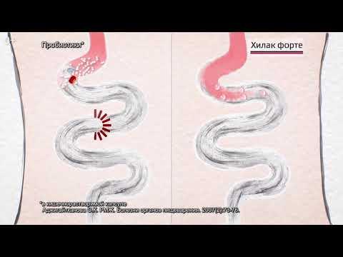 A parazita testének megtisztítása az ellenségek által - Az emberi fonálférgek kezelése