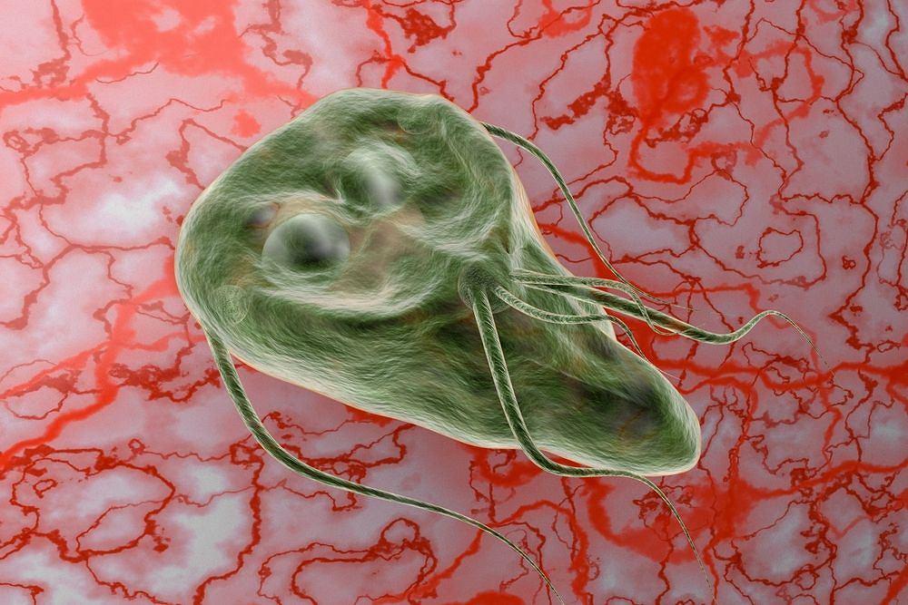 égett gumi szaga a szájból férgek felnőttkori tünetek kezelésére szolgáló tablettákban