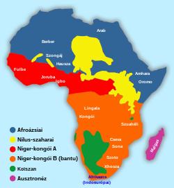 Nyelvváltozatok, köz- és irodalmi nyelv | Pannon Enciklopédia | Kézikönyvtár