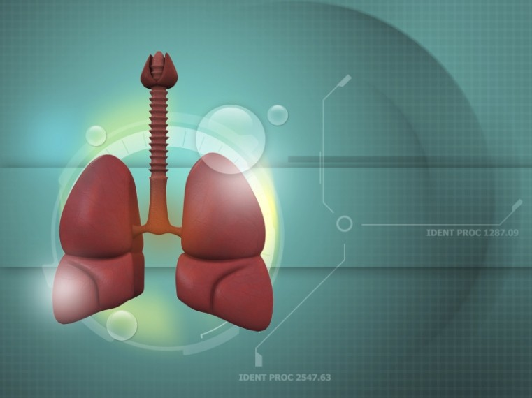 hogyan ellenőrzi a lélegzetét komplex készítmények férgekhez