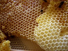 A méz egészségünkre hasznos felhasználási módjai, avagy miért ne főzzünk mézzel - Valódi Sáfrány